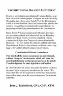 Constitutional Balance Amendment