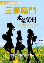 三妻臨門第一部: 《最新浪漫愛情勵志幽默小說》