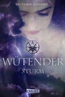 W  tender Sturm PDF