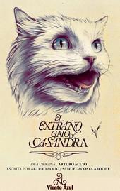 El extraño gato de Casandra