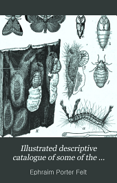 Illustrated descriptive catalogue of some of the more important injurious and beneficial insects of New York State: Issue 11