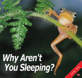 Why Aren't You Sleeping?: Little Kiss53