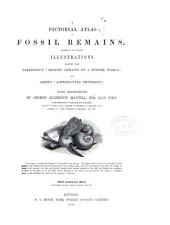 "A Pictorial Atlas of Fossil Remains: Consisting of Coloured Illustrations Selected from Parkinson's ""Organic Remains of a Former World,"" and Artis's ""Antediluvian Phytology."""