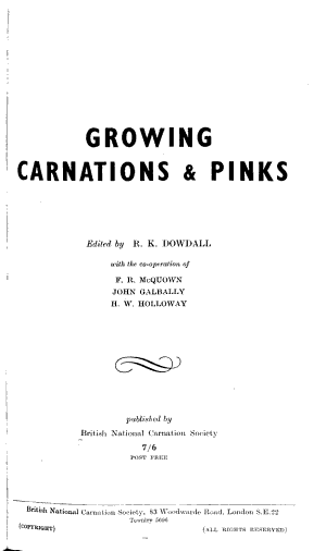 Growing Carnations Pinks