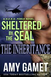 Sheltered by the SEAL: (Military Romantic Suspense) (HERO Force Series)