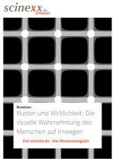 Illusion und Wirklichkeit PDF
