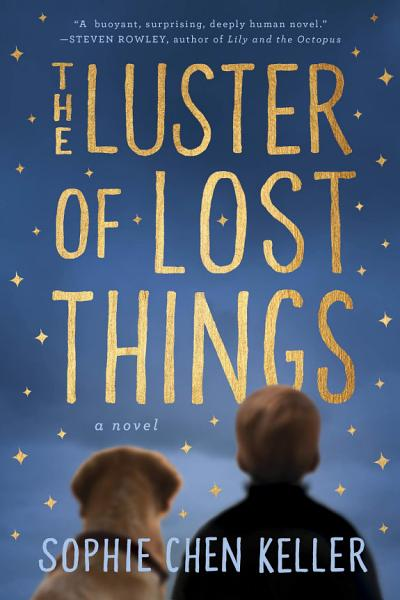 Download The Luster of Lost Things Book