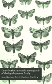 Contributions Toward a Monograph of the Lepidopterous Family Noctuidæ of Boreal North America: A Revision of the Species of Acronycta (Ochsenheimer) and of Certain Allied Genera