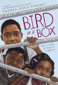 Bird in a Box Book