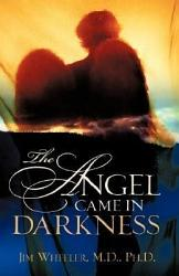 The Angel Came in Darkness PDF