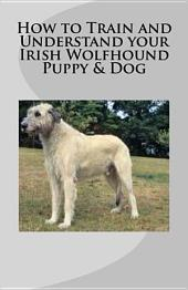 How to Train and Understand Your Irish Wolfhound Puppy and Dog