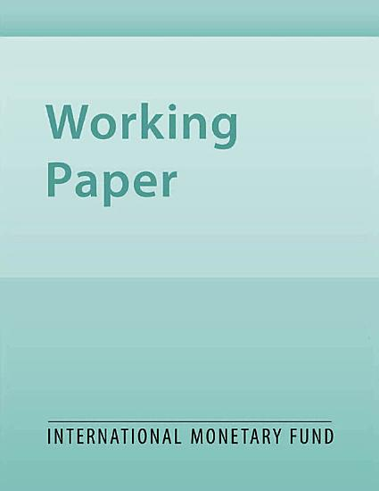 Informal Labour and Credit Markets PDF