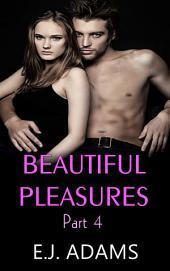 Beautiful Pleasures Book 4: A Billionaire Romance