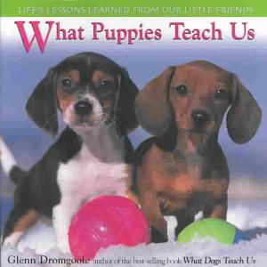 What Puppies Teach Us