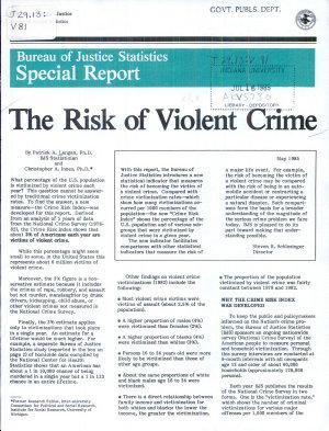 The Risk of Violent Crime PDF