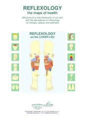 REFLEXOLOGY on the LOWER LEG: REFLEXOLOGY - the maps of health