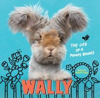 Wally PDF
