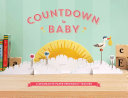 Countdown to Baby PDF