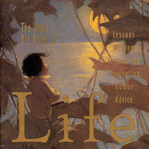 The Little Big Book of Life Book