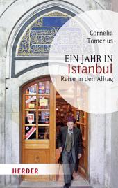 Ein Jahr in Istanbul: Reise in den Alltag