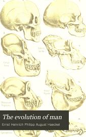 Human stem history or phylogeny