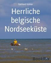 Herrliche belgische Nordseeküste