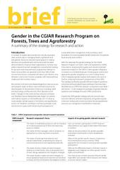 Gender in the CGIAR Research Program on Forests, Trees and Agroforestry: A summary of the strategy for research and action
