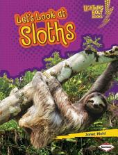 Let's Look at Sloths