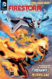 The Fury of Firestorm: The Nuclear Men (2011-) #8