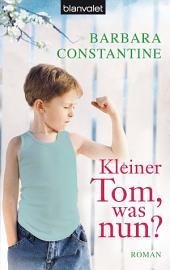 Kleiner Tom, was nun?: Roman