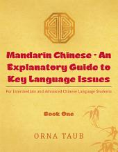 Mandarin Chinese - An Explanatory Guide to Key Language Issues: For Intermediate and Advanced Chinese Language Students
