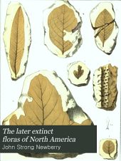 The Later Extinct Floras of North America