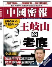 《中國密報》第47期: 王岐山的老底
