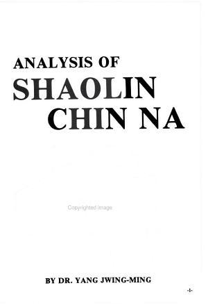 Analysis of Shaolin Chin Na PDF