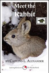 Meet the Rabbit: A 15-Minute Book for Early Readers: Educational Version
