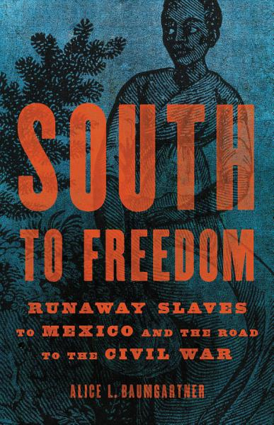 Download South to Freedom Book