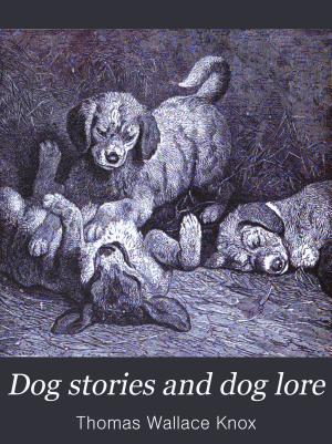 Dog Stories and Dog Lore PDF