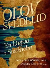 En Dufva i Stockholm: En historisk roman