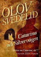 Catarina och Silvervägen: En historisk roman