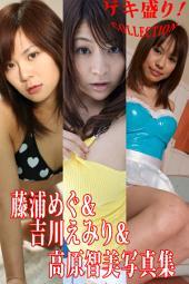 ゲキ盛り!Collection!藤浦めぐ&吉川えみり&高原智美写真集(Japanese Erotic Girls in Sexy Bikini): キレイでエッチなお姉さんはお好きですか?