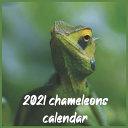 2021 Chameleons Calendar