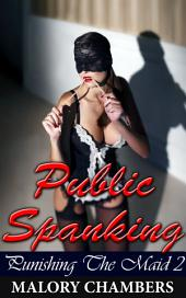 "Public Spanking: Book 2 of ""Punishing The Maid"""