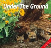 Under the Ground: Little Kiss18