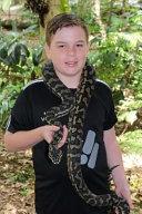 Jungle Carpet Python Notebook
