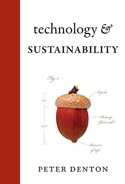 Download Technology and Sustainability Book