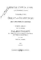 Geological Survey of Illinois: Volume 8