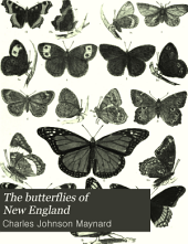 The Butterflies of New England: With Original Descriptions of One Hundred and Six Species, Accompanied by an Appendix Containing Descriptions of One Hundred Additional Species