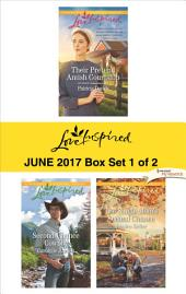 Harlequin Love Inspired June 2017 - Box Set 1 of 2: Their Pretend Amish Courtship\Second-Chance Cowboy\The Single Mom's Second Chance