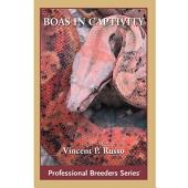 Boa Constrictors in Captivity