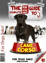 The Complete Guide to Cane Corso
